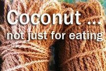 Coconut ... not just for eating / From coconut oil to coconut fiber, check out all the ways our favorite seed can be used.  / by Dang Foods