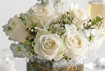 white & beige color love / by Susan Kincaid-Misthos