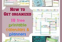Family/Household Organization