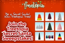 Treetopia Secret Santa Sweepstakes 2012 / Get a chance to win a pair of stylish Christmas trees--one for you and one for your friend! :) Join NOW -- https://www.facebook.com/treetopia/app_208585222608866 / by Treetopia Artificial Christmas Trees