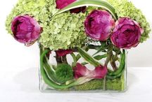 Flower Arrangement  / Bouquets & Centerpieces For All Occasions  / by Wendy Tomoyasu