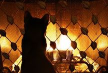 "Fireplaces / ""There is no place more delightful than one's own fireplace."" ~ Marcus T. Cicero"