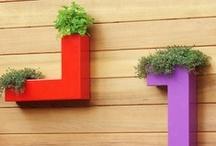 Green / Garden, Urban Farming & Greenery / by Daniel Goodman