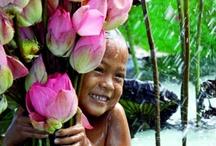 Thailand / by Rebekah M