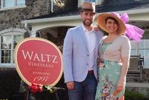 { Waltz Wine Club } / Events and happenings of the Waltz Wine Club