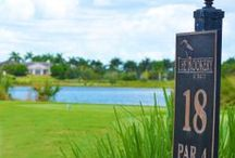 "Tee Time in Paradise / Enjoy award-winning tropical resort amenities with a combined 36 holes of championship golf at the Marco Island Marriott Golf Resort with two stunning ""Resort-Private"" courses where golf and nature are coupled in perfect harmony. / by MarcoMarriott"