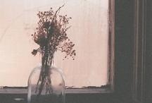 Tras la ventana - through the window