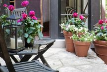 Gardens and Patios
