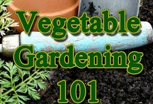 garden your own Produce / by Diane Turner