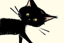 Meow Meow / All things feline!