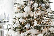 My dream Christmas / My dream Christmas with family