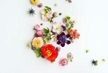 Inspiring / by Jessica Ann