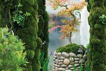 Garden and Landscape / by Lori Pearson