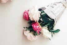 FLORALS & PLANTS / #flowers #plants #floral #pretty