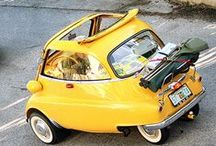 Stylish & Quirky Cars