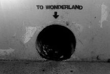 Curiouser & Curiouser / Follow me down the rabbit hole... or through the looking glass... / by Clare M
