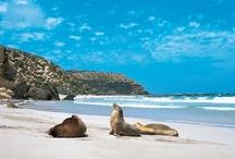 South Australia / by Visit Australia