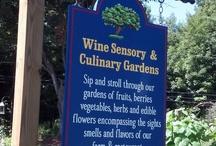 Sensory Garden / by Nashoba Winery