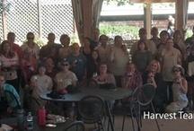 Harvest 2012 / by Nashoba Winery