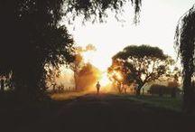 Running / by Jessica Bonati
