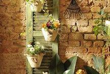 Gardening n' Things / by Megan Butler
