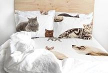 softly and furnished / Soft things for bedrooms, bathrooms, kitchens and living rooms. / by Leah Dent