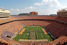 Luv UT / by Debra Egan
