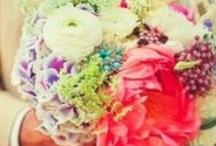 Flowers / by Stephanie Cielinski