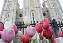 LDS General Conference / Gatherings in Temple Square and DIY's for those watching from home. / by Visit Salt Lake