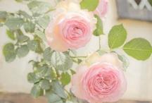Mmmm...Roses