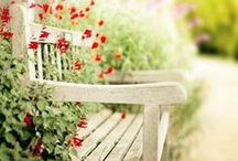 hAVe A seaT / by daNa ~ANd~ aRc Cole