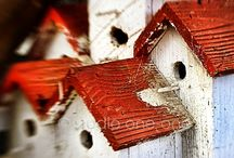 birdhouse / by Josi ..