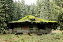 cabin / by Josi ..