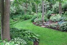 Gardening/The Great Outdoors / by Sherry Paetznick