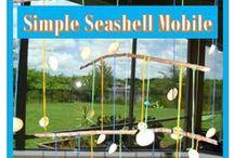 Wildlife Adventures: Seashells