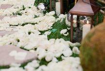 Katrina's Wedding
