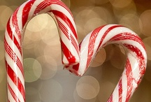 Candy Canes / by Brenda Hall
