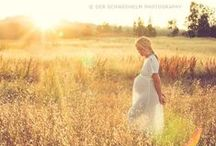 Photography | Maternity / by Kelly Lemmons