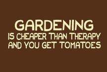 Gardening / by Jodie Lytner Treptow