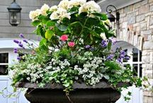 Flower Pots, Window Boxes & Florals / best of whimsical #flower #pot #plantings, #window boxes and flower arrangement. #florals #centerpieces #landscape #whimsical / by Joy Siegel