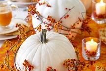 SEASONAL - Thanksgiving/Fall / by Heather Lackey