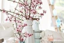 SEASONAL - Spring / by Heather Lackey