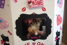 We Found Our Forever Home at Yakima Humane / Quick pics of new forever families that found each other at the Yakima Humane Society