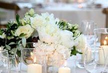 WEDDING! / by Taylor Felty