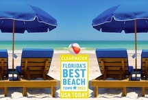 Voted #USAToday's #1 Beach in FL ~ Clearwater Beach