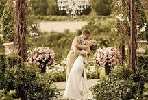 Wedding Bells / by Shannon Carberry
