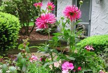 "Beautiful Gardens and Landscaping / ""He who plants a garden plants happiness."" / by Wild Petals"