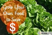 Gardening+Growing: Plants, Herbs & Food