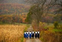 Amish Country / by Julie Lane