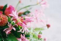 Dark Hues-Photosythesis Floral Design